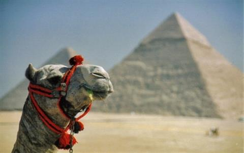 5 day travel package in Egypt