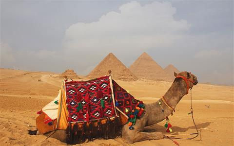 Cairo and Hurghada package
