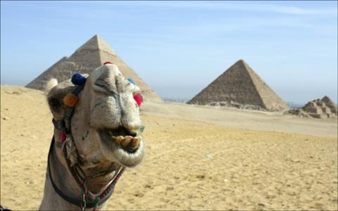 Day Trip to Giza Pyramids & Nile Felucca from Alexandria port